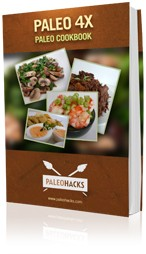 Paleo recipe book - all recipes only contain 4 ingredients or less