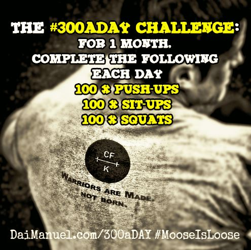 The #300aDay Challenge