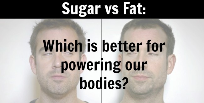 Sugar vs Fat: Which is better for powering our bodies