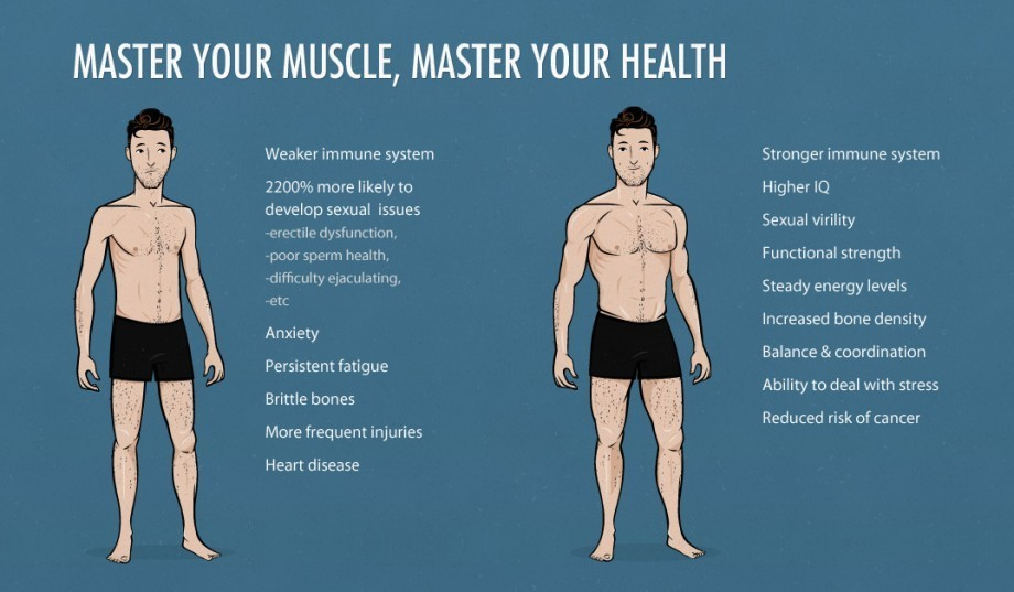 the-ideal-male-body-weight-chart-skinny-vs-muscle