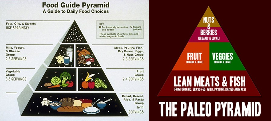 On the left we have the original 1992 USDA Food Pyramid vs the Paleo Pyramid on the right