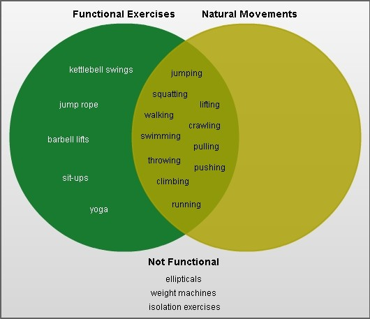 33 venn diagram artificial selection natural selection artificial venn artificial selection diagram natural selection venn natural functional movement diagram ccuart Image collections