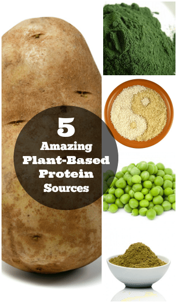 5 Amazing Plant Based Protein Sources