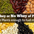 the whey or no whey of protein_are plants enough to fuel me