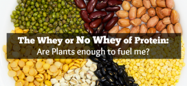 The Whey or No Whey of Protein: Are Plants enough to fuel me? #ItMatters