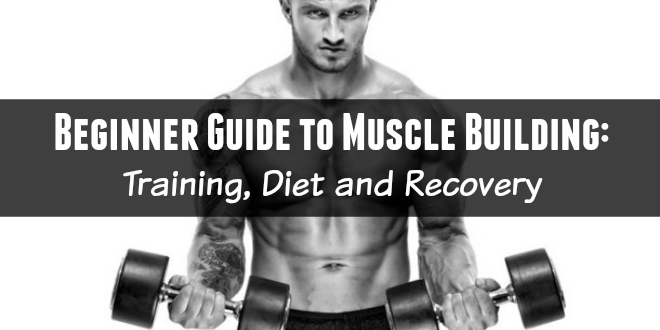 Beginner Guide to Muscle Building