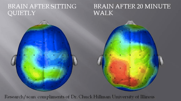 This is your brain on Exercise... looks pretty good to me.