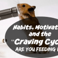 Habits_Craving_Cycle