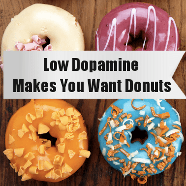 low dopamine makes you want donuts