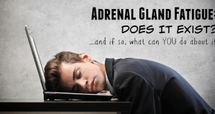 Adrenal Gland Fatigue