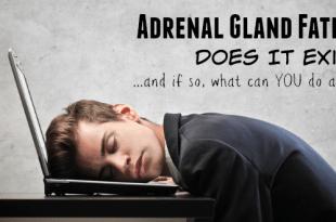 Adrenal Gland Fatigue