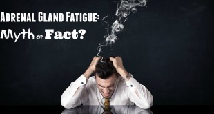 Adrenal Gland Fatigue: Myth or Fact?