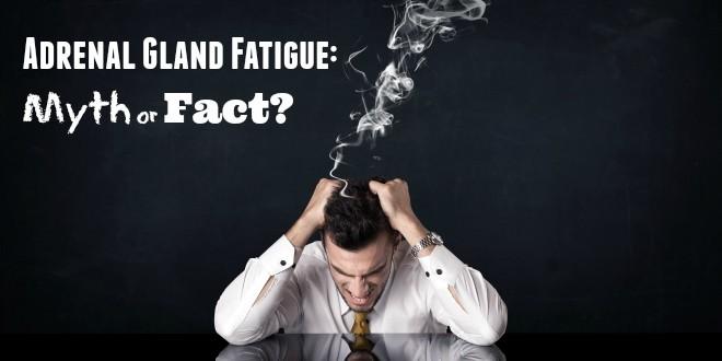 Adrenal Gland Fatigue: Myth or Fact?