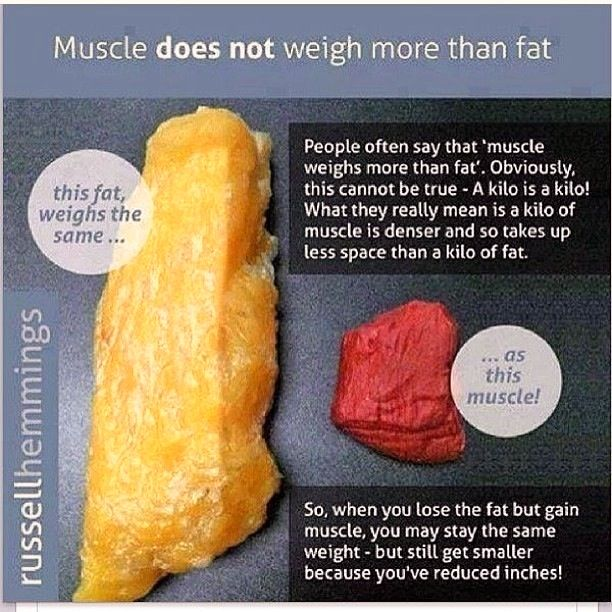 body fat percentage and what they look like