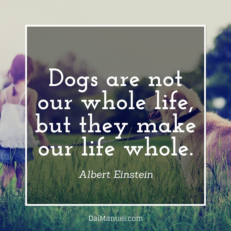 dogs are not our whole life but they make our life whole