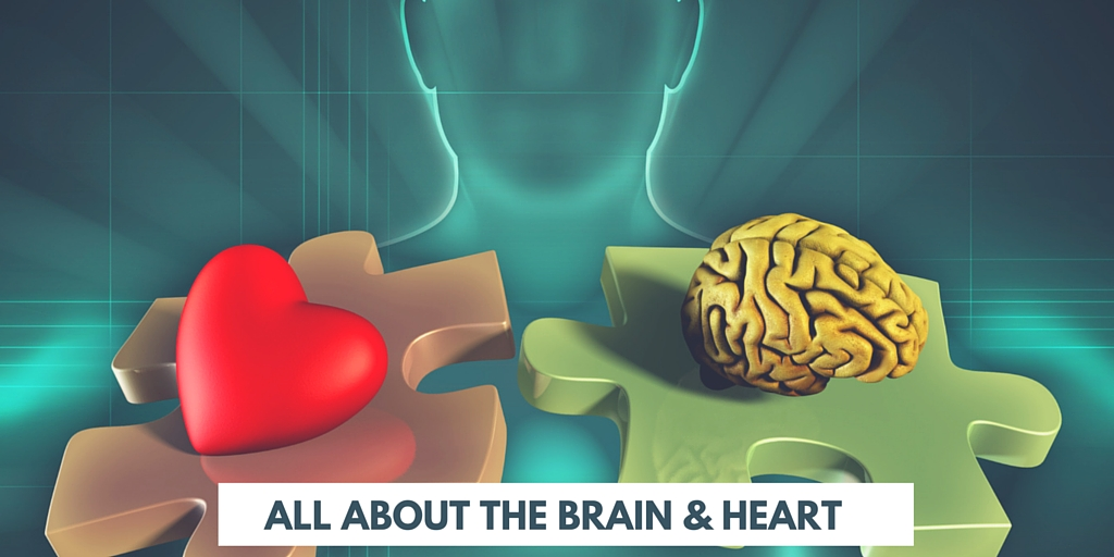 all about brain and heart