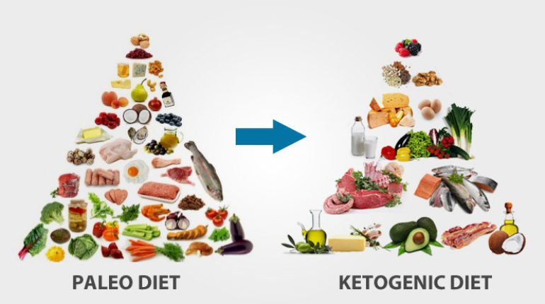 All you need to know about the Paleo and Ketogenic Diets ...