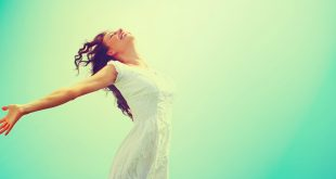 Total lifestyle transformation program - the whole life manifesto coaching program