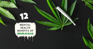 12 Mental Health Benefits of Marijuana You Should Know