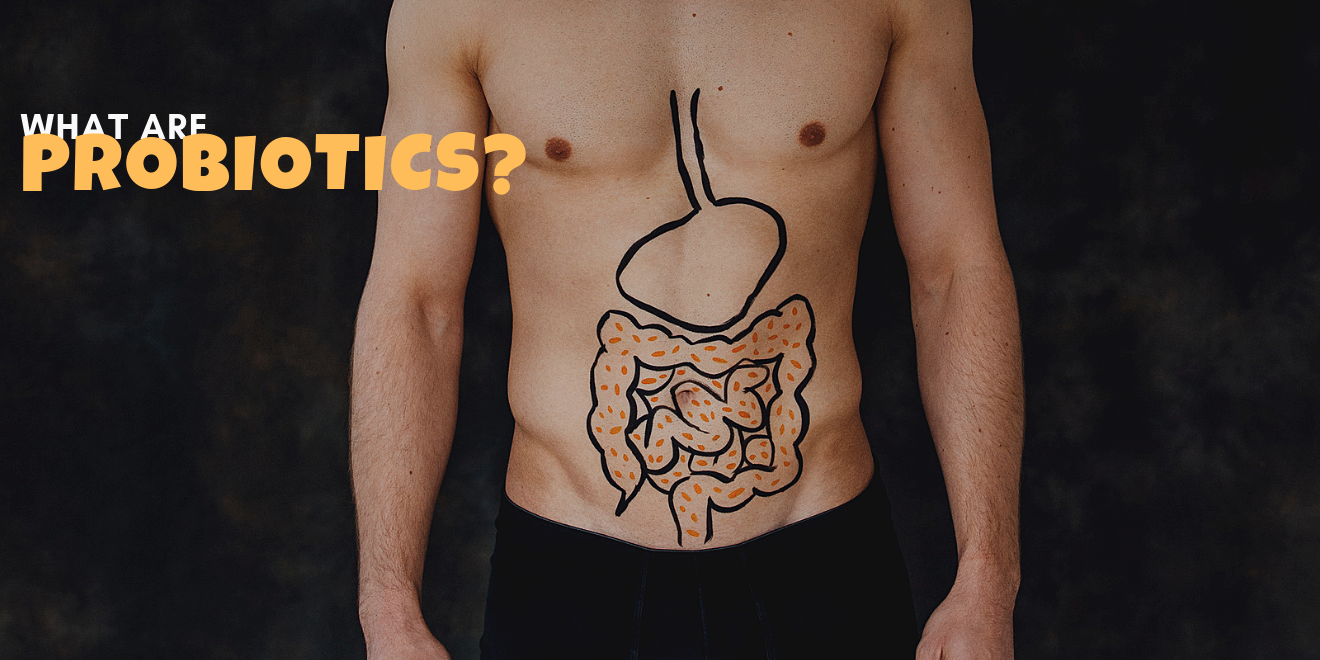 What are probiotics and why do they keep us healthy
