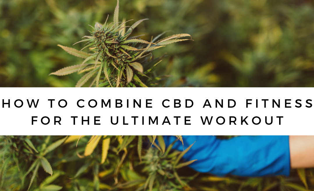 CBD and Fitness: Combining the Two for the Ultimate Workout