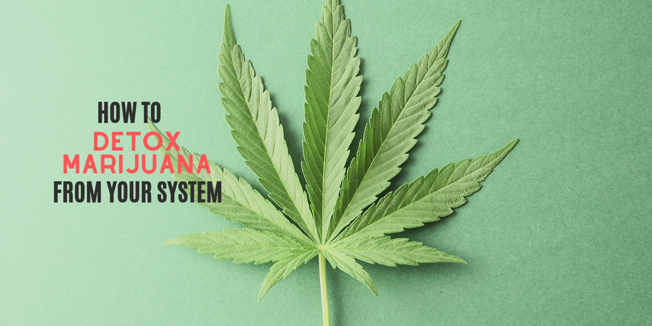 How to Detox Marijuana Out of Your System