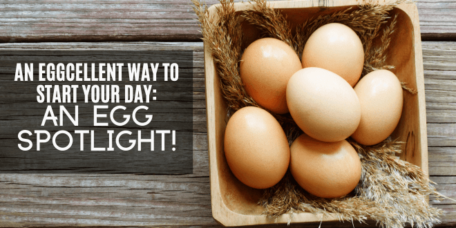 An EGGcellent way to start your day A spotlight on eggs