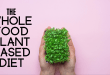 Why Everyone Should Adopt a Plant-Based Whole Food Diet The Beginners Guide