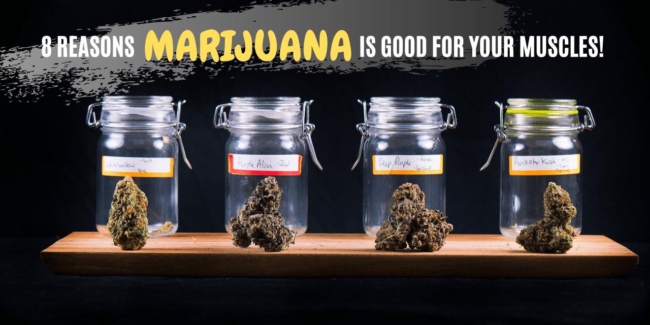 8 Reasons Marijuana is Good for Your Muscles