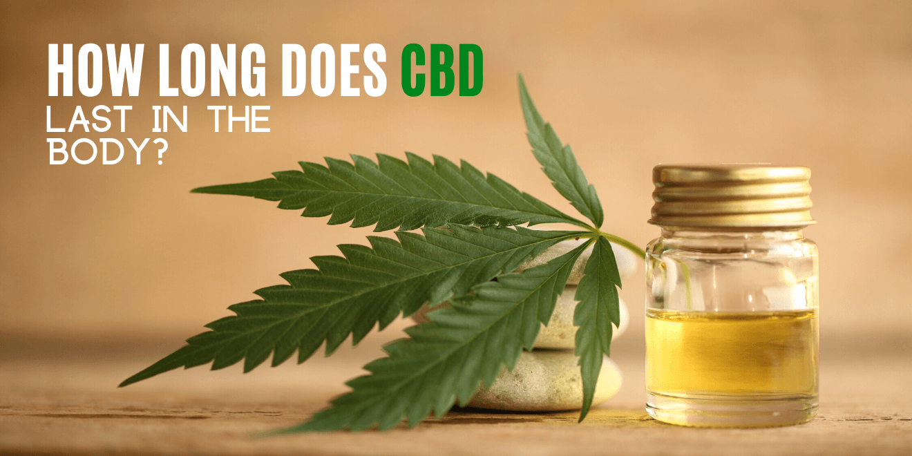 How Long Does CBD Last in the Body