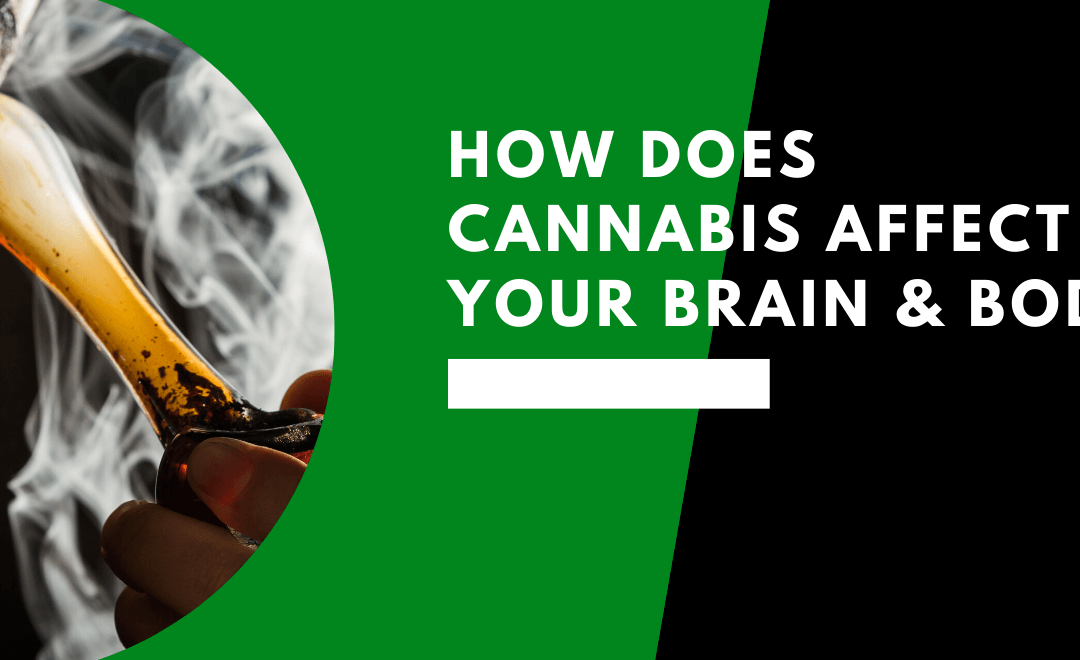 How Does Cannabis Affect Your Brain and Body