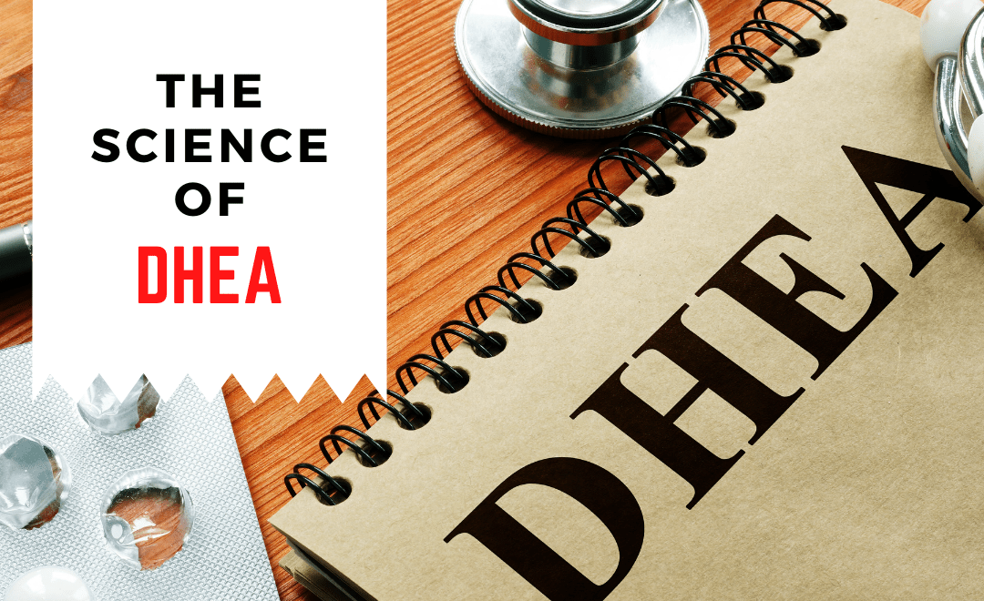 The science of DHEA and Why supplementing with it can be beneficial?