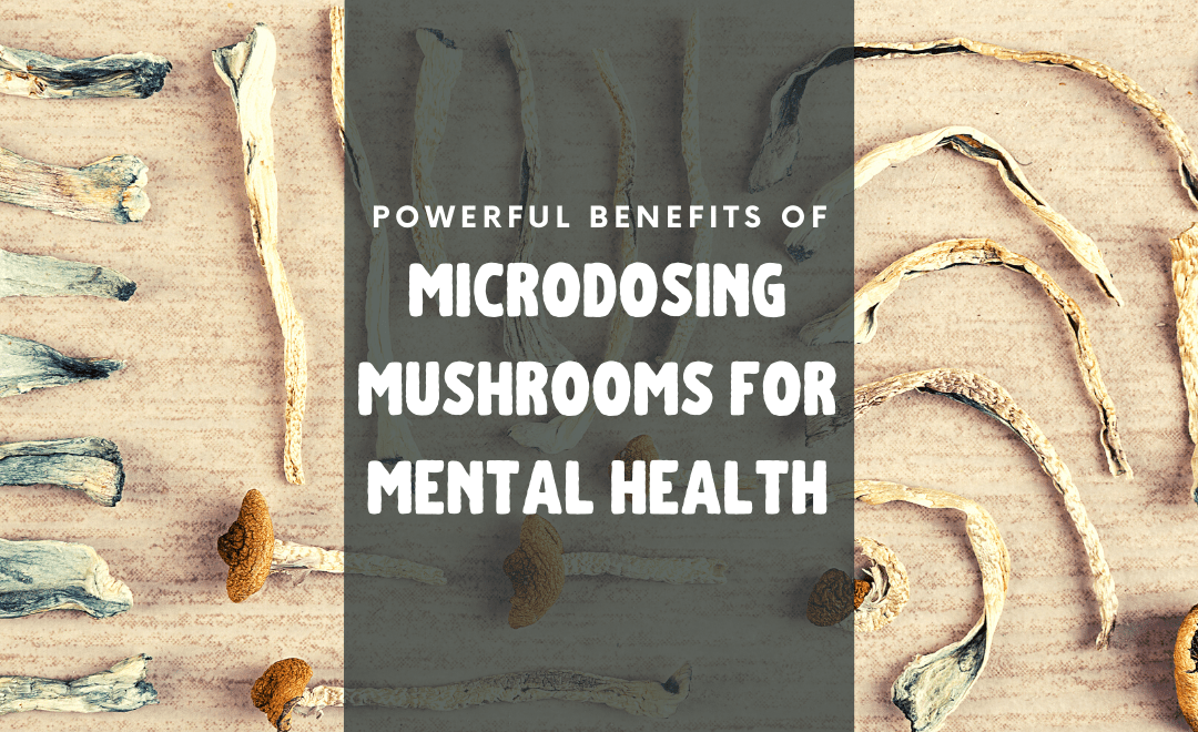 Powerful Benefits of Microdosing Mushrooms for Mental Health