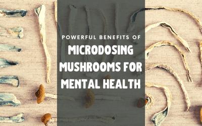 Powerful Benefits of Microdosing Mushrooms for Mental Health